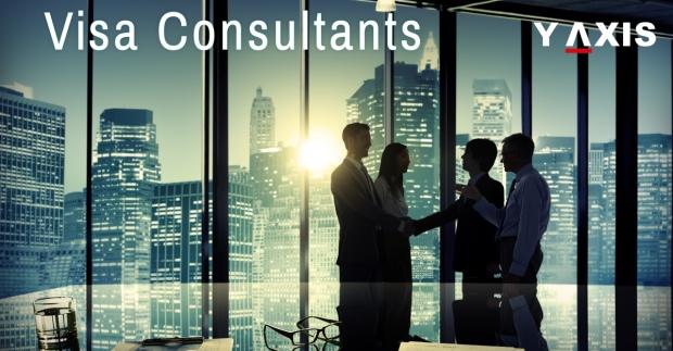 Visa Consultants